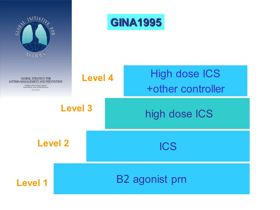 High dose ICS +other controller B2 agonist prn Level 1 ICS high dose ICS Level 2 Level 3 Level 4 GINA1995