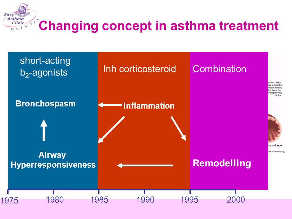 Assessing asthma control Treating to achieve asthma control Monitoring to maintain control Day symptoms Night symptoms Reliever PEFR Exacerbation Limitation of activity GINA 2006 2006 1.B2-agonist prn 2.ICS 3.ICS (low dose) + LABA 4.ICS (high dose) + LABA 5.ICS (high dose) + LABA + prednisolone Controlled Partly controlled Uncontrolled