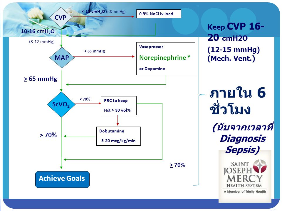 CVP MAP 0.9% NaCl iv load < 10 cmH 2 O (<8 mmHg) 10-16 cmH 2 O (8-12 mmHg) ScVO 2 Vasopressor Norepinephrine * or Dopamine > 65 mmHg < 65 mmHg Dobutam