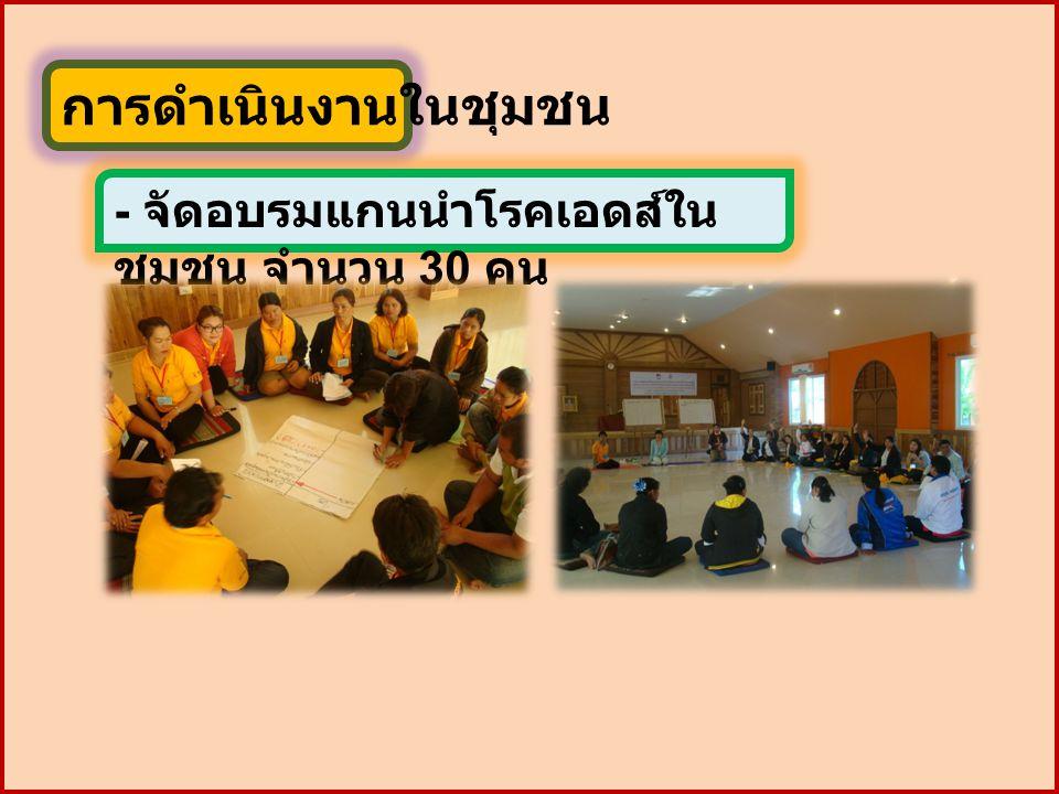 การดำเนินงานในชุมชน - จัดอบรมแกนนำโรคเอดส์ใน ชุมชน จำนวน 30 คน