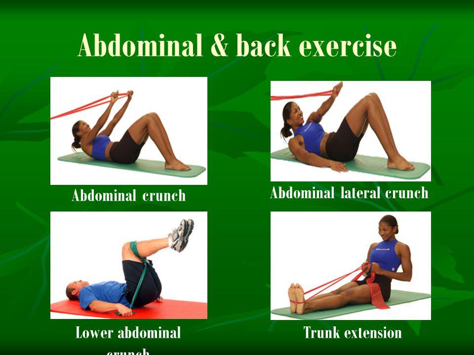 Abdominal & back exercise Abdominal crunch Abdominal lateral crunch Lower abdominal crunch Trunk extension