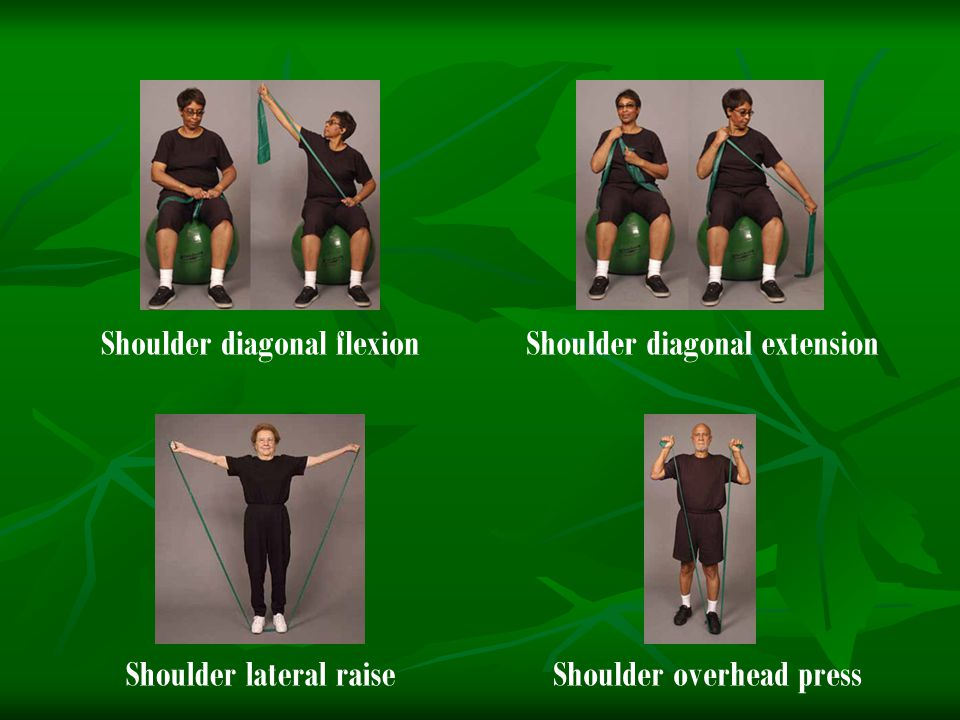Shoulder lateral raiseShoulder overhead press Shoulder diagonal flexionShoulder diagonal extension