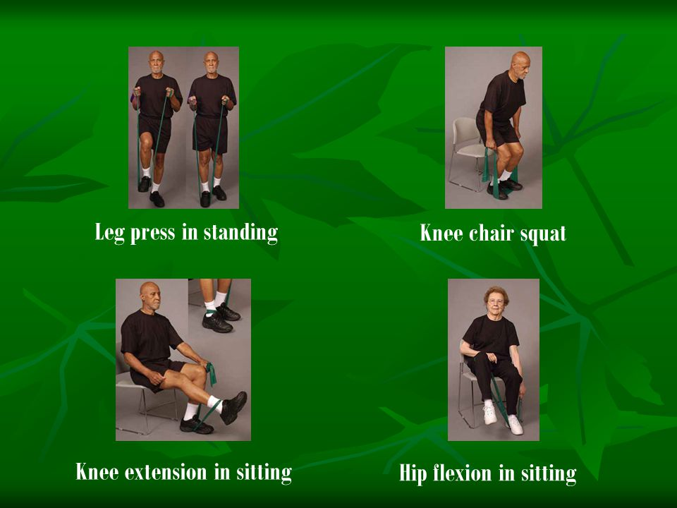 Knee extension in sitting Hip flexion in sitting Leg press in standing Knee chair squat