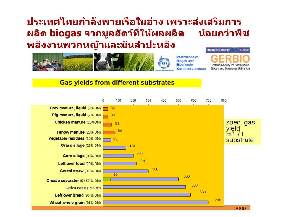 ประเทศไทยกำลังพายเรือในอ่าง เพราะส่งเสริมการ ผลิต biogas จากมูลสัตว์ที่ให้ผลผลิต น้อยกว่าพืช พลังงานพวกหญ้าและมันสำปะหลัง