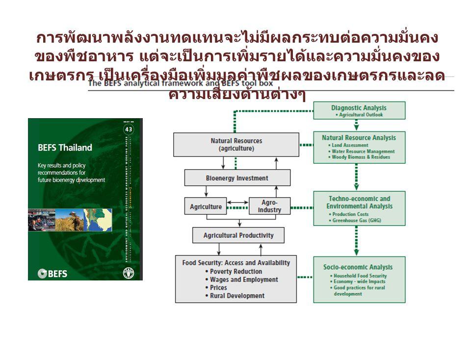 การพัฒนาพลังงานทดแทนจะไม่มีผลกระทบต่อความมั่นคง ของพืชอาหาร แต่จะเป็นการเพิ่มรายได้และความมั่นคงของ เกษตรกร เป็นเครื่องมือเพิ่มมูลค่าพืชผลของเกษตรกรและลด ความเสี่ยงด้านต่างๆ
