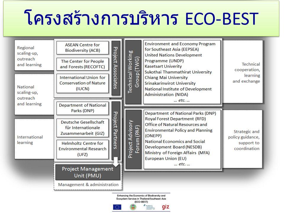 โครงสร้างการบริหาร ECO-BEST