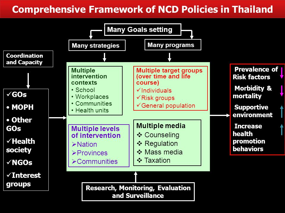 Comprehensive Framework of NCD Policies in Thailand Many Goals setting Many strategies Many programs Multiple intervention contexts School Workplaces