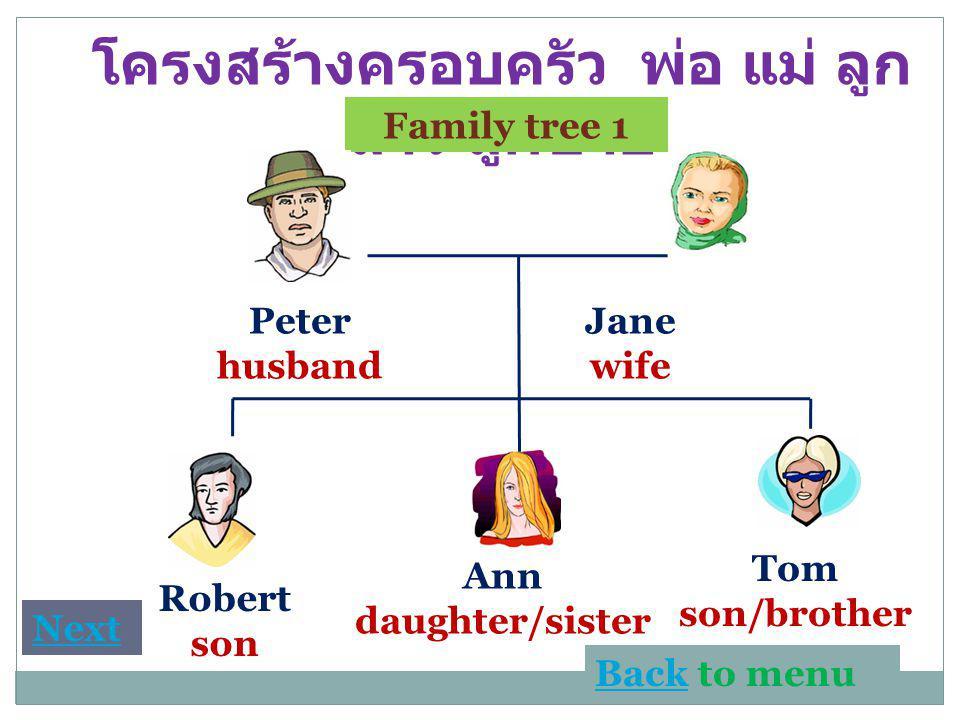 โครงสร้างครอบครัว พ่อ แม่ ลูก สาว ลูกชาย Family tree 1 Peter husband Jane wife Robert son Ann daughter/sister Tom son/brother BackBack to menu Next