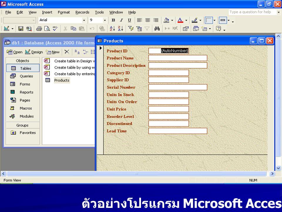 ตัวอย่างโปรแกรม Microsoft Access