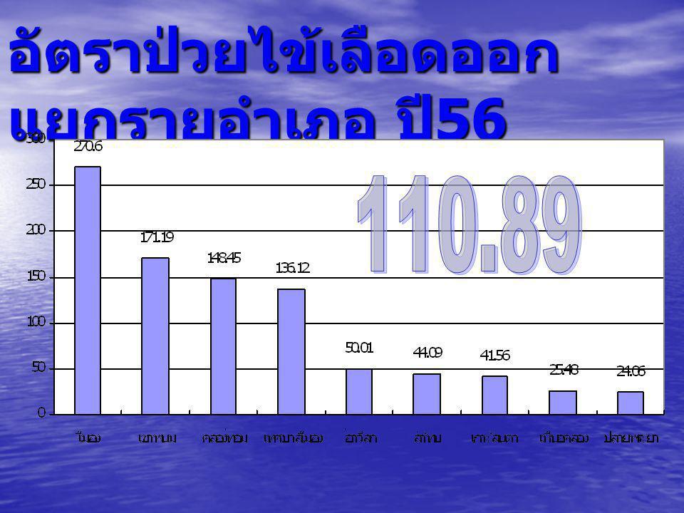 จำนวนผู้ป่วยไข้เลือดออก แยกรายเดือน จ. กระบี่ ปี 2556