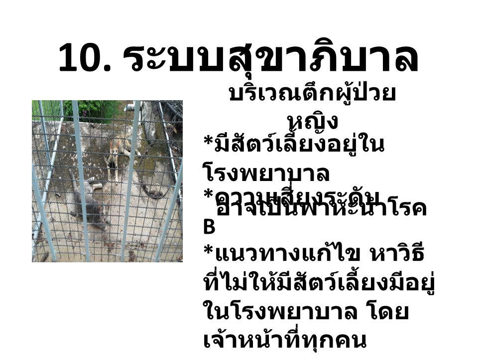 10. ระบบสุขาภิบาล * มีสัตว์เลี้ยงอยู่ใน โรงพยาบาล อาจเป็นพาหะนำโรค * แนวทางแก้ไข หาวิธี ที่ไม่ให้มีสัตว์เลี้ยงมีอยู่ ในโรงพยาบาล โดย เจ้าหน้าที่ทุกคน