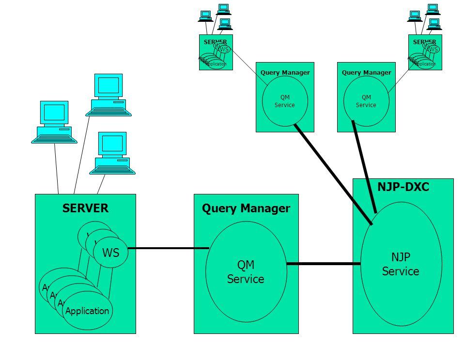 SERVERQuery Manager NJP-DXC NJP Service QM Service Application Query Manager QM Service Application WS SERVER Application WS Query Manager QM Service SERVER Application WS