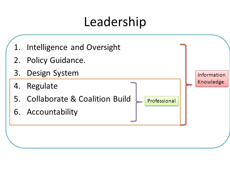 Leadership 1.Intelligence and Oversight 2.Policy Guidance. 3.Design System 4.Regulate 5.Collaborate & Coalition Build 6.Accountability Information Kno