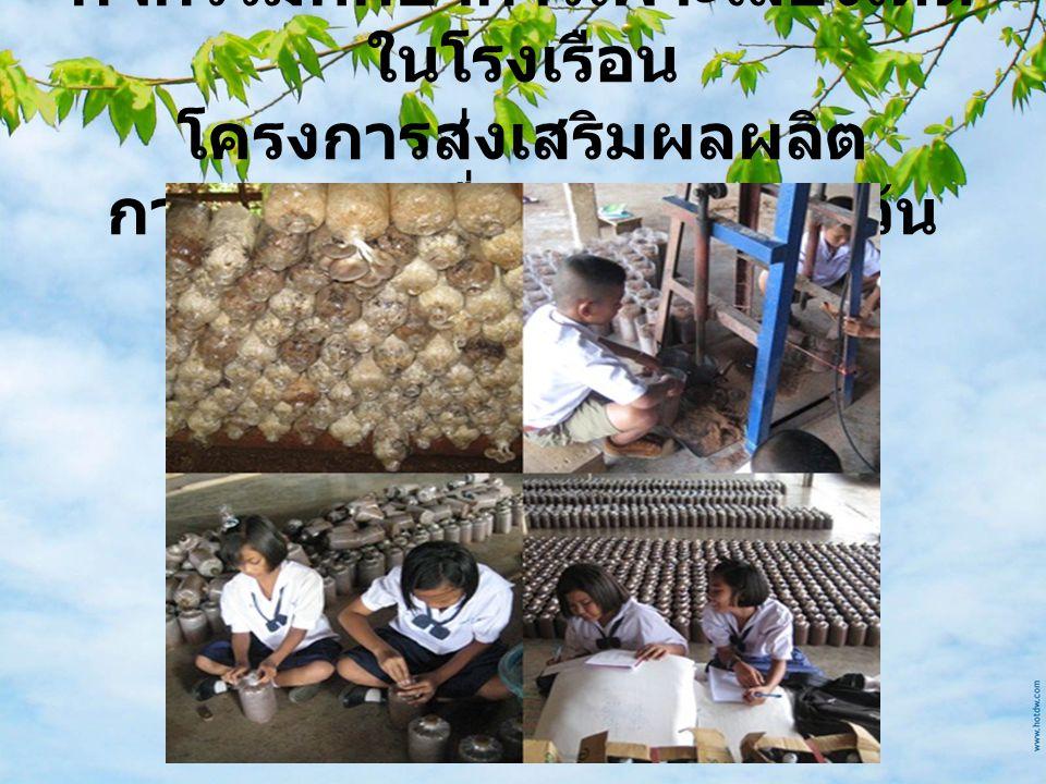 กิจกรรมศึกษาการเพาะเลี้ยงเห็ด ในโรงเรือน โครงการส่งเสริมผลผลิต การเกษตรเพื่ออาหารกลางวัน