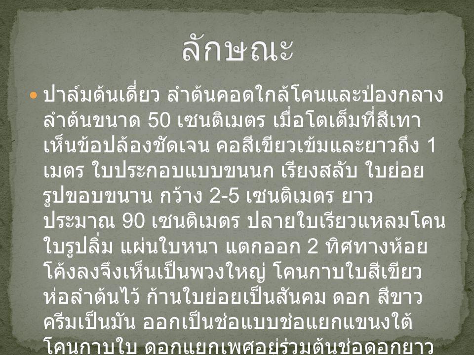 ชื่อวิทยาศาสตร์ Pyllanthus acidus (L.) skeels ชื่อวงศ์ EUPHORBIACEAE ชื่อสามัญ Ster Gooseberry ชื่อพื้นเมืองอื่นๆ ภาคใต้ ยม, หมากยม หมักยม ภาค อีสาน, มะยม ภาคเหนือ ถิ่นกำเนิด เขตร้อนของทวีปแอฟริกา การกระจายในประเทศไทย - นิเวศวิทยา แดดจัดหรือในที่ร่มรำไร ดินร่วน ซุย ความชื้นพอเหมาะ เวลาออกดอก ฤดูฝน ( ปลาย เมษายน - พฤษภาคม ) เวลาขยายผล - การขยายพันธุ์ เพาะเมล็ด ตอนกิ่ง ปักชำ