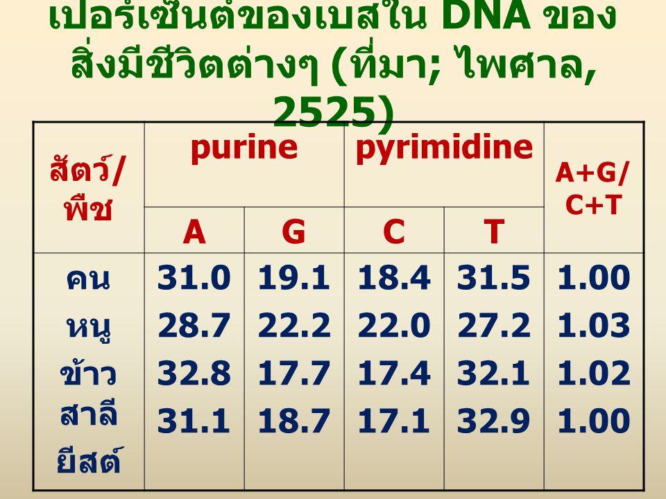 เปอร์เซ็นต์ของเบสใน DNA ของ สิ่งมีชีวิตต่างๆ ( ที่มา ; ไพศาล, 2525) สัตว์ / พืช purinepyrimidine A+G/ C+T AGCT คน หนู ข้าว สาลี ยีสต์ 31.0 28.7 32.8 3