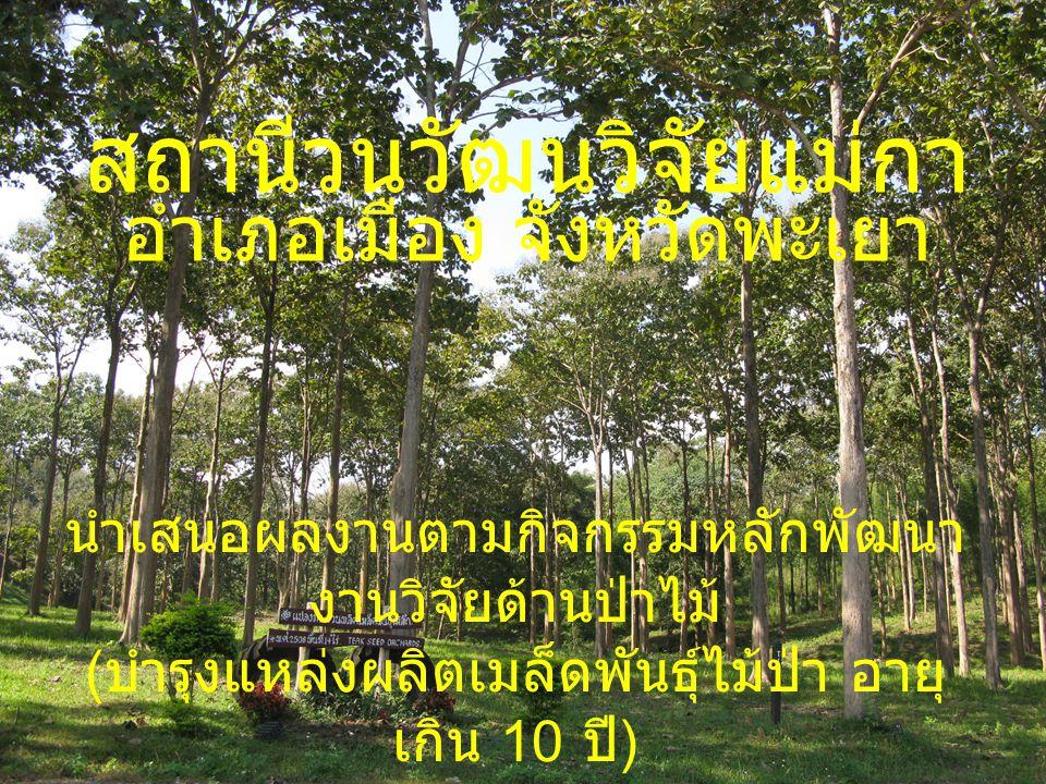 สถานีวนวัฒนวิจัยแม่กา อำเภอเมือง จังหวัดพะเยา นำเสนอผลงานตามกิจกรรมหลักพัฒนา งานวิจัยด้านป่าไม้ ( บำรุงแหล่งผลิตเมล็ดพันธุ์ไม้ป่า อายุ เกิน 10 ปี ) 8-