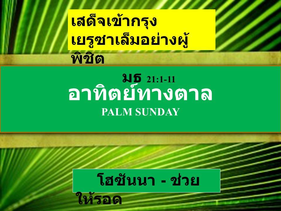 อาทิตย์ทางตาล PALM SUNDAY เสด็จเข้ากรุง เยรูซาเล็มอย่างผู้ พิชิต มธ 21:1-11 โฮซันนา - ช่วย ให้รอด