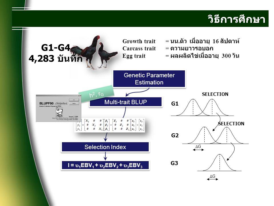 ผลการทดลอง Avg 88 g/head Avg 1.5 egg/head Avg 200 g/head Avg 66 g/head
