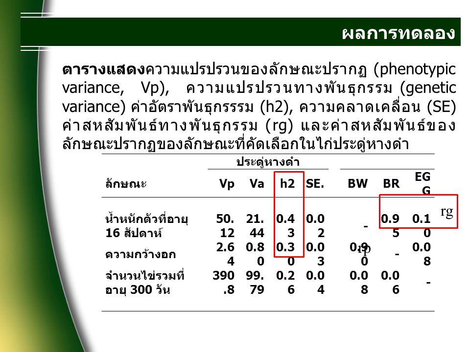ผลการทดลอง ประดู่หางดำ ลักษณะ VpVah2SE.BWBR EG G น้ำหนักตัวที่อายุ 16 สัปดาห์ 50. 12 21. 44 0.4 3 0.0 2 - 0.9 5 0.1 0 ความกว้างอก 2.6 4 0.8 0 0.3 0 0.