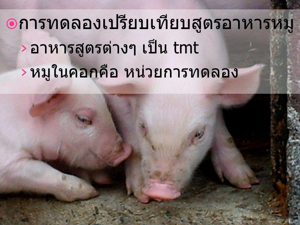 › อาหารสูตรต่างๆ เป็น tmt › หมูในคอกคือ หน่วยการทดลอง