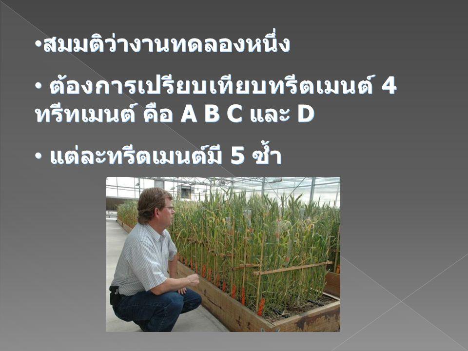 สมมติว่างานทดลองหนึ่ง ต้องการเปรียบเทียบทรีตเมนต์ 4 ทรีทเมนต์ คือ A B C และ D แต่ละทรีตเมนต์มี 5 ซ้ำ สมมติว่างานทดลองหนึ่ง ต้องการเปรียบเทียบทรีตเมนต์