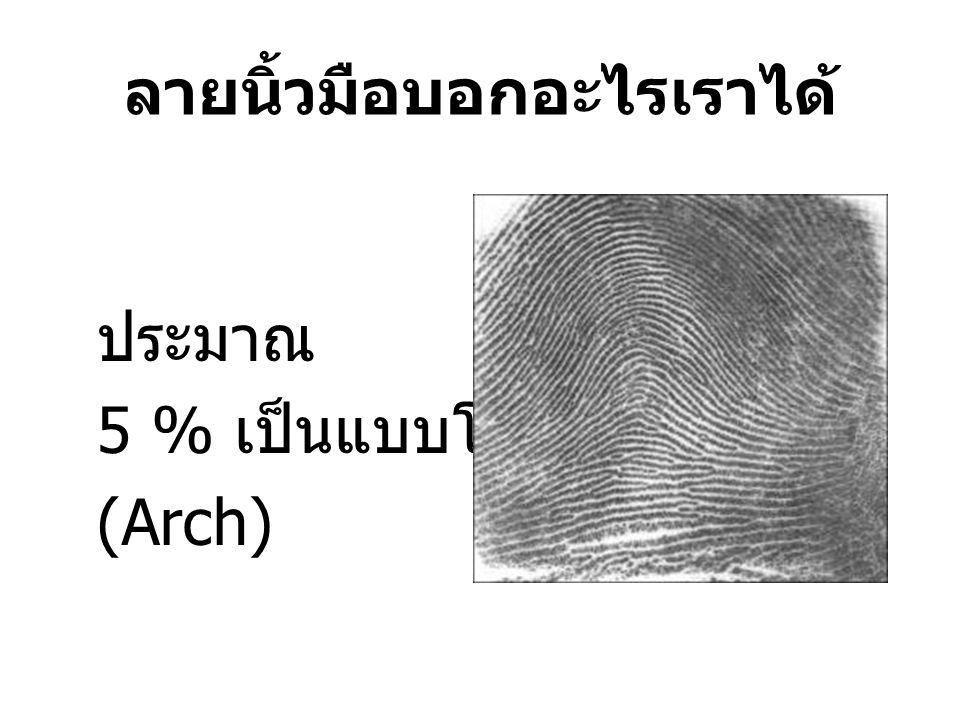 ลายนิ้วมือบอกอะไรเราได้ ประมาณ 5 % เป็นแบบโค้ง (Arch)