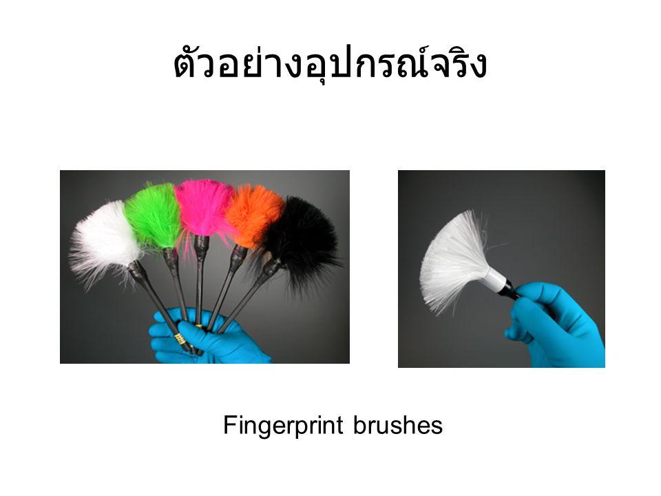 ตัวอย่างอุปกรณ์จริง Fingerprint brushes