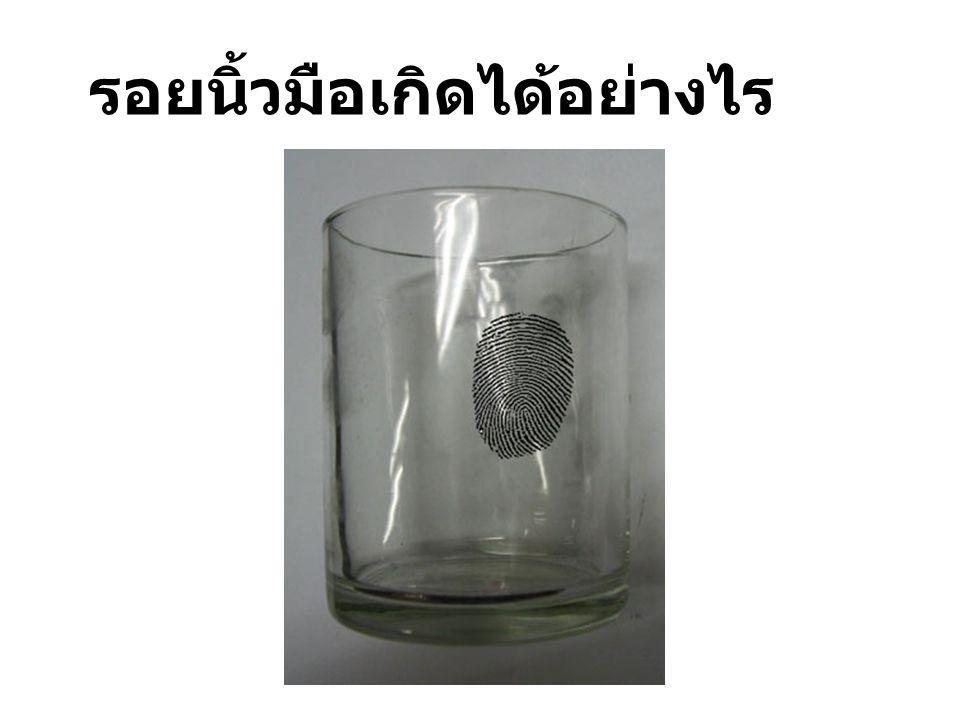 ตัวอย่างอุปกรณ์จริง Fingerprint powder