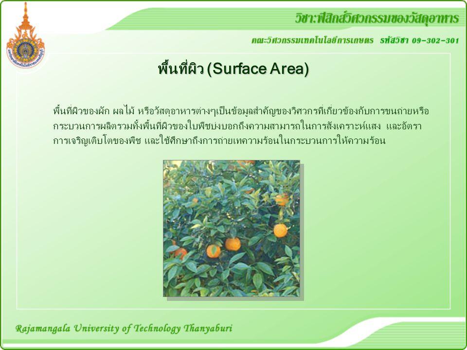 พื้นที่ผิว (Surface Area) พื้นที่ผิวของผัก ผลไม้ หรือวัสดุอาหารต่างๆเป็นข้อมูลสำคัญของวิศวกรที่เกี่ยวข้องกับการขนถ่ายหรือ กระบวนการผลิตรวมทั้งพื้นที่ผิวของใบพืชบ่งบอกถึงความสามารถในการสังเคราะห์แสง และอัตรา การเจริญเติบโตของพืช และใช้ศึกษาถึงการถ่ายเทความร้อนในกระบวนการให้ความร้อน