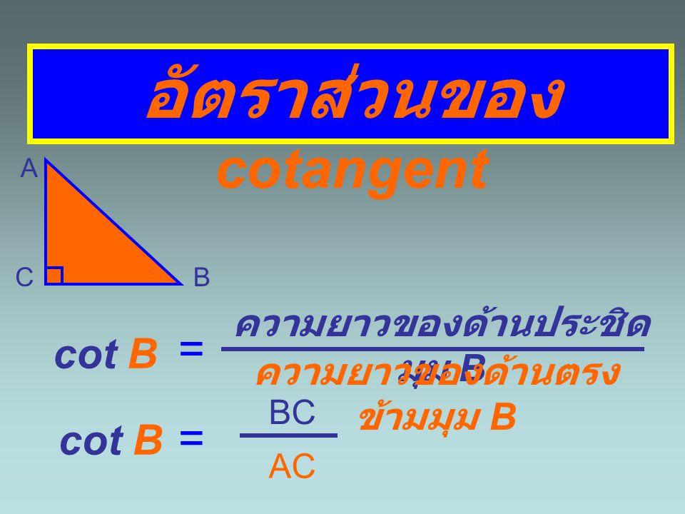 อัตราส่วนของ cotangent A BC cot A = ความยาวของด้านประชิด มุม A ความยาวของด้านตรง ข้ามมุม A cot A = AC BC