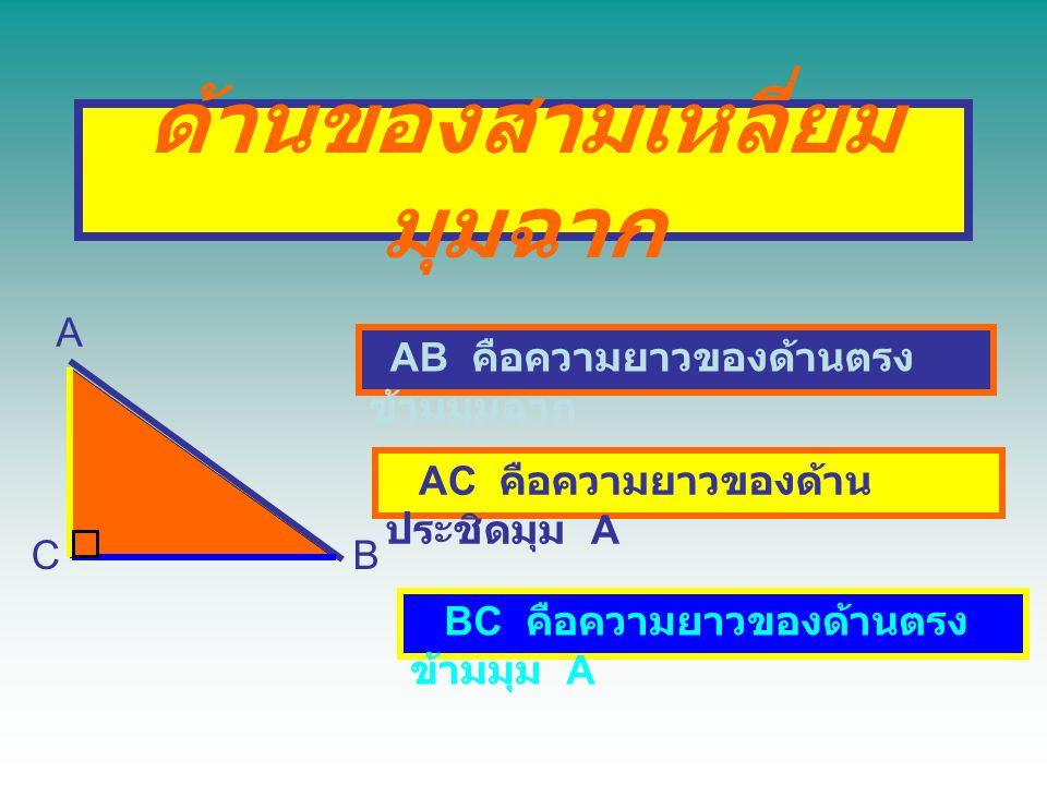 ด้านของสามเหลี่ยม มุมฉาก A BC AB คือความยาวของด้านตรง ข้ามมุมฉาก AC คือความยาวของด้าน ประชิดมุม A BC คือความยาวของด้านตรง ข้ามมุม A