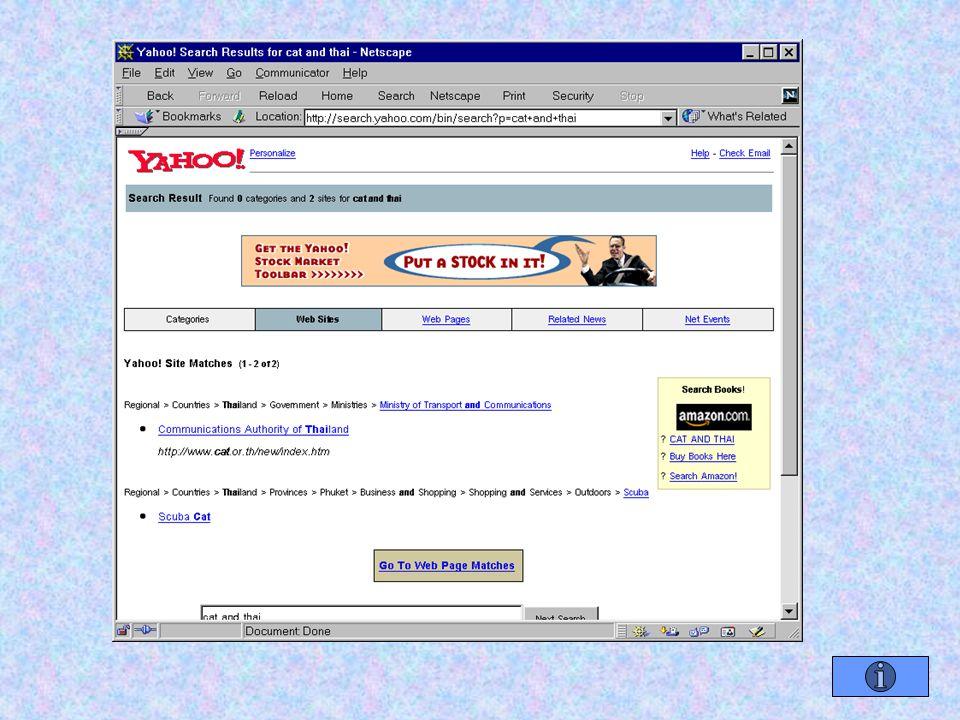 เว็บไซต์ส่วนตัว มีไว้เพื่อเผยแพร่งานหรือเรื่องราวที่ ต้องการให้สาธารณะรับทราบ การขอมีเว็บไซต์ส่วนตัว – ขอใช้บริการจาก ISP จ่ายค่าเช่ารายเดือน / ปี – ขอใช้บริการฟรี ใช้ browser เข้าสู่ web site ที่ให้บริการฟรี ลงทะเบียน ( แจงรายละเอียดส่วนตัว / บางทีโกหก ) ภายใน 1 สัปดาห์จะได้รับชื่อ web site ใน รูปแบบดังนี้ http://domain_name/your_site_name