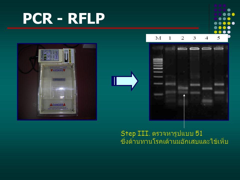 PCR - RFLP Step III. ตรวจหารูปแบบ 51 ซึ่งต้านทานโรคเต้านมอักเสบและไข้เห็บ