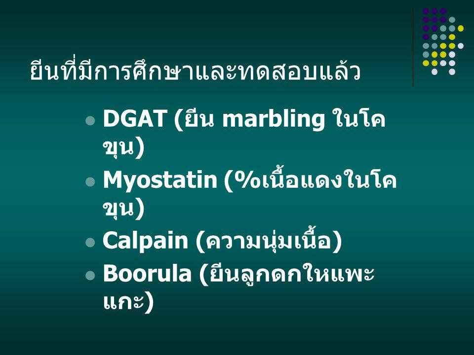 ยีนที่มีการศึกษาและทดสอบแล้ว DGAT ( ยีน marbling ในโค ขุน ) Myostatin (% เนื้อแดงในโค ขุน ) Calpain ( ความนุ่มเนื้อ ) Boorula ( ยีนลูกดกใหแพะ แกะ )