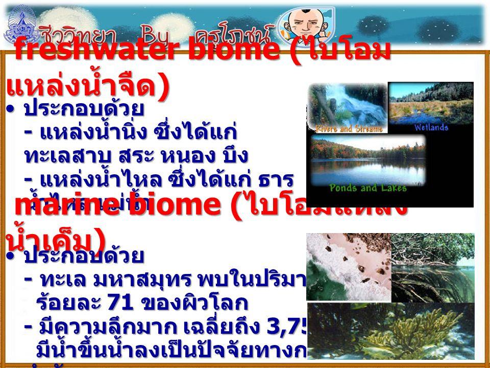 freshwater biome ( ไบโอม แหล่งน้ำจืด ) freshwater biome ( ไบโอม แหล่งน้ำจืด ) ประกอบด้วย - แหล่งน้ำนิ่ง ซึ่งได้แก่ ทะเลสาบ สระ หนอง บึง - แหล่งน้ำไหล