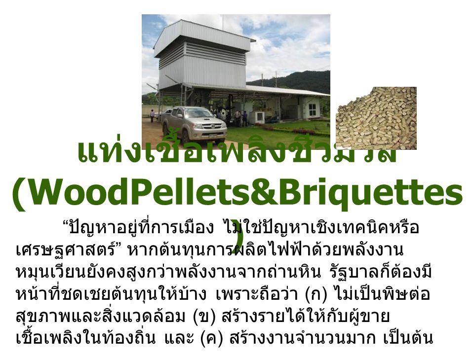 """แท่งเชื้อเพลิงชีวมวล (WoodPellets&Briquettes ) """" ปัญหาอยู่ที่การเมือง ไม่ใช่ปัญหาเชิงเทคนิคหรือ เศรษฐศาสตร์ """" หากต้นทุนการผลิตไฟฟ้าด้วยพลังงาน หมุนเวี"""