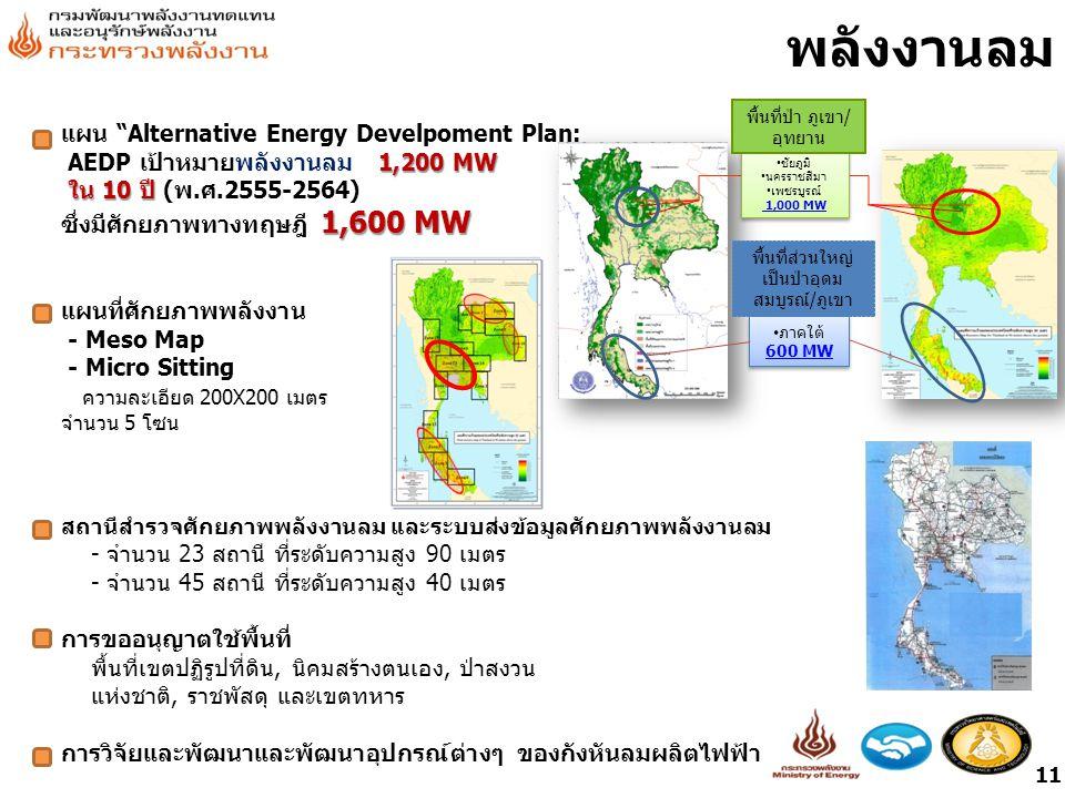 แผน Alternative Energy Develpoment Plan: 1,200 MW AEDP เป้าหมายพลังงานลม 1,200 MW ใน 10 ปี ใน 10 ปี (พ.ศ.2555-2564) 1,600 MW ซึ่งมีศักยภาพทางทฤษฎี 1,600 MW แผนที่ศักยภาพพลังงาน - Meso Map - Micro Sitting ความละเอียด 200X200 เมตร จำนวน 5 โซน สถานีสำรวจศักยภาพพลังงานลม และระบบส่งข้อมูลศักยภาพพลังงานลม - จำนวน 23 สถานี ที่ระดับความสูง 90 เมตร - จำนวน 45 สถานี ที่ระดับความสูง 40 เมตร การขออนุญาตใช้พื้นที่ พื้นที่เขตปฏิรูปที่ดิน, นิคมสร้างตนเอง, ป่าสงวน แห่งชาติ, ราชพัสดุ และเขตทหาร การวิจัยและพัฒนาและพัฒนาอุปกรณ์ต่างๆ ของกังหันลมผลิตไฟฟ้า ภาคใต้ 600 MW ภาคใต้ 600 MW ชัยภูมิ นครราชสีมา เพชรบูรณ์ 1,000 MW ชัยภูมิ นครราชสีมา เพชรบูรณ์ 1,000 MW พื้นที่ป่า ภูเขา/ อุทยาน พื้นที่ส่วนใหญ่ เป็นป่าอุดม สมบูรณ์/ภูเขา พลังงานลม 11