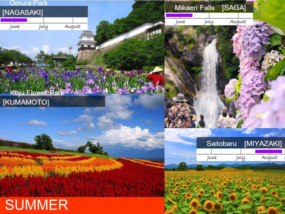 Omura Park [NAGASAKI] Mikaeri Falls [SAGA] Saitobaru [MIYAZAKI] SUMMER Kuju Flower Park [KUMAMOTO]