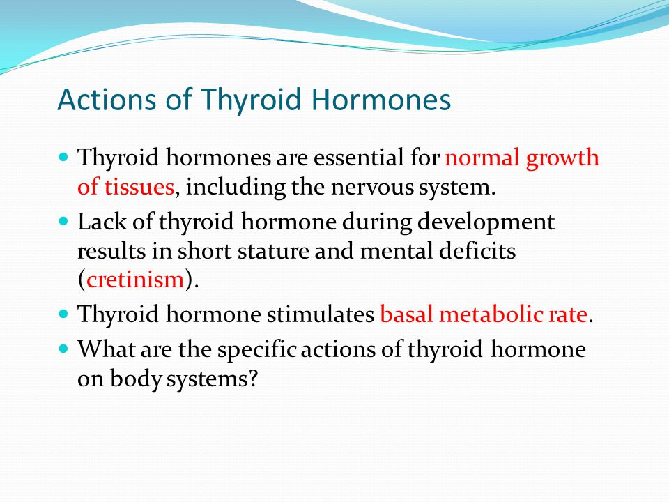 Actions of Thyroid Hormones Thyroid hormones are essential for normal growth of tissues, including the nervous system. Lack of thyroid hormone during