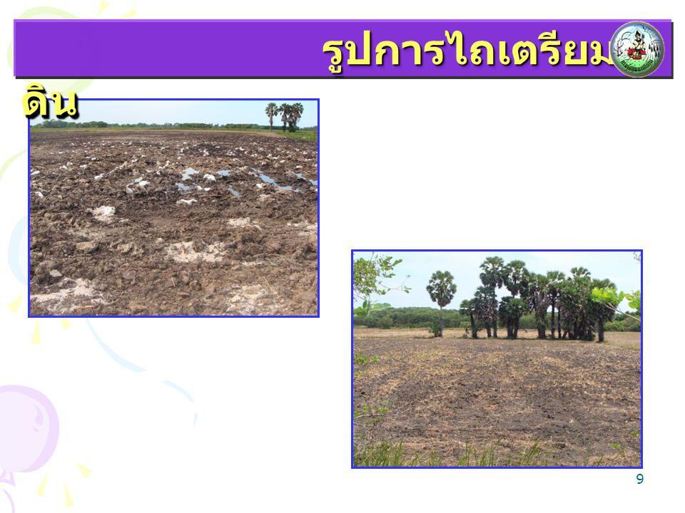 10  ข้อมูลจากส่วนโครงการพิเศษ กองแผนงาน กรมพัฒนาที่ดิน