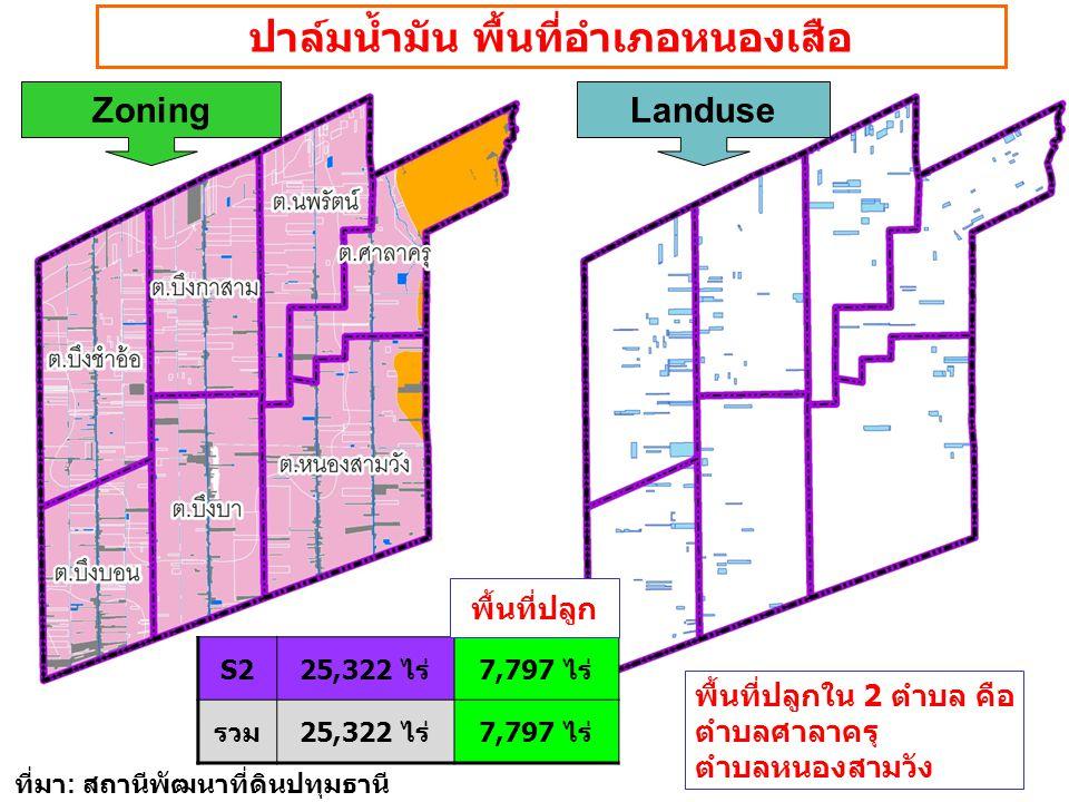 ZoningLanduse ปาล์มน้ำมัน พื้นที่อำเภอหนองเสือ S225,322 ไร่7,797 ไร่ รวม25,322 ไร่7,797 ไร่ พื้นที่ปลูก พื้นที่ปลูกใน 2 ตำบล คือ ตำบลศาลาครุ ตำบลหนองส