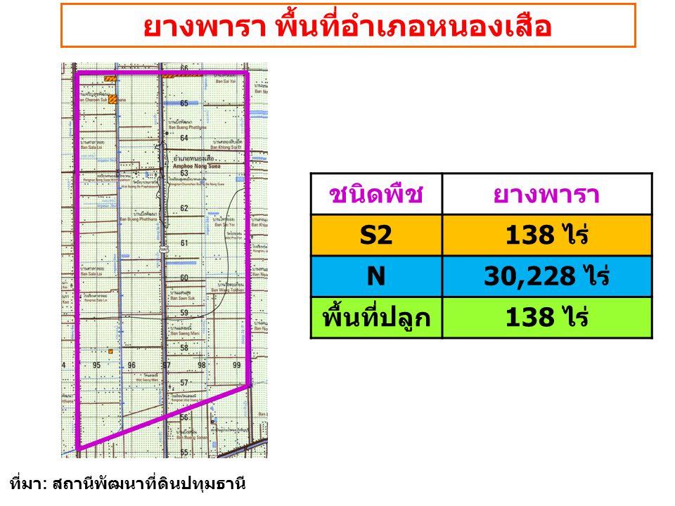 ยางพารา พื้นที่อำเภอหนองเสือ ชนิดพืชยางพารา S2138 ไร่ N30,228 ไร่ พื้นที่ปลูก138 ไร่ ที่มา : สถานีพัฒนาที่ดินปทุมธานี