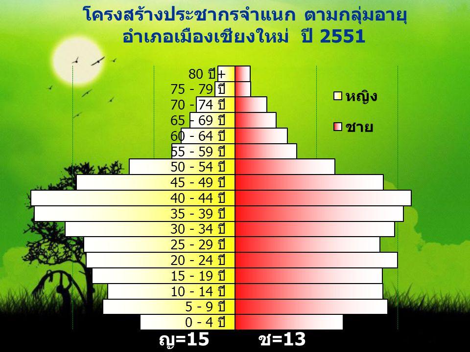 โครงสร้างประชากรจำแนก ตามกลุ่มอายุ อำเภอเมืองเชียงใหม่ ปี 2551 ญ =15 4,031 ช =13 5,234