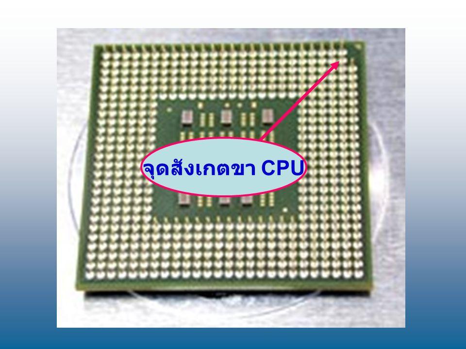 จุดสังเกตขา CPU