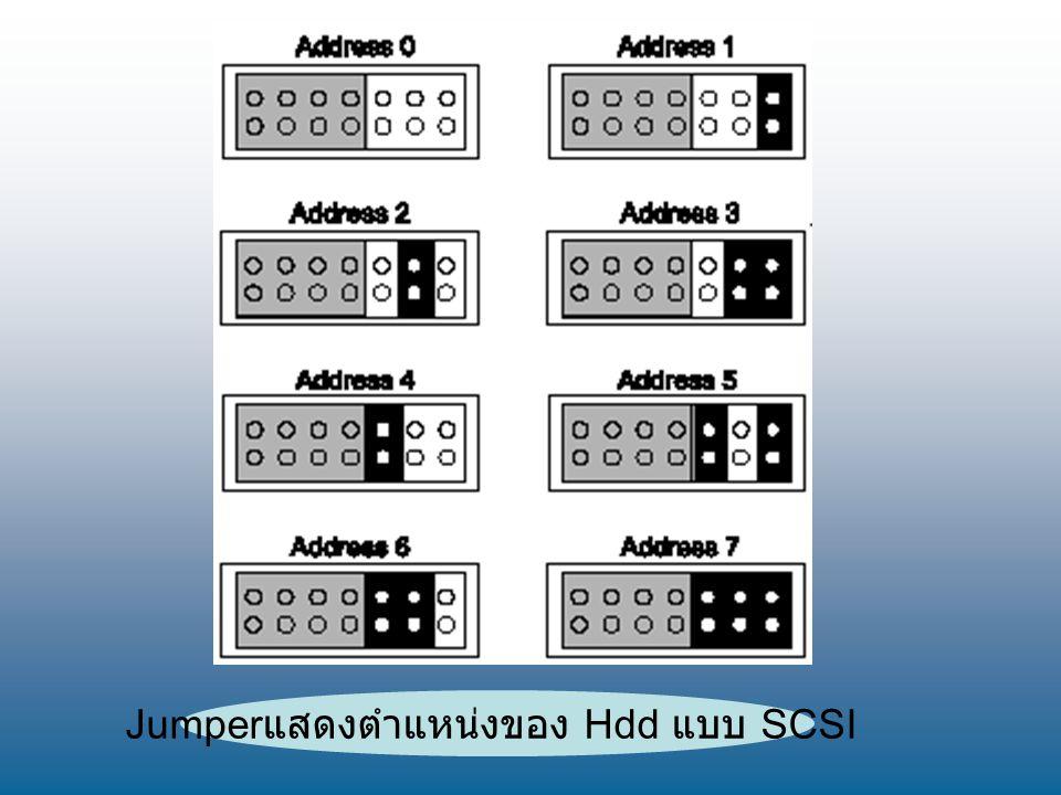 Jumper แสดงตำแหน่งของ Hdd แบบ SCSI