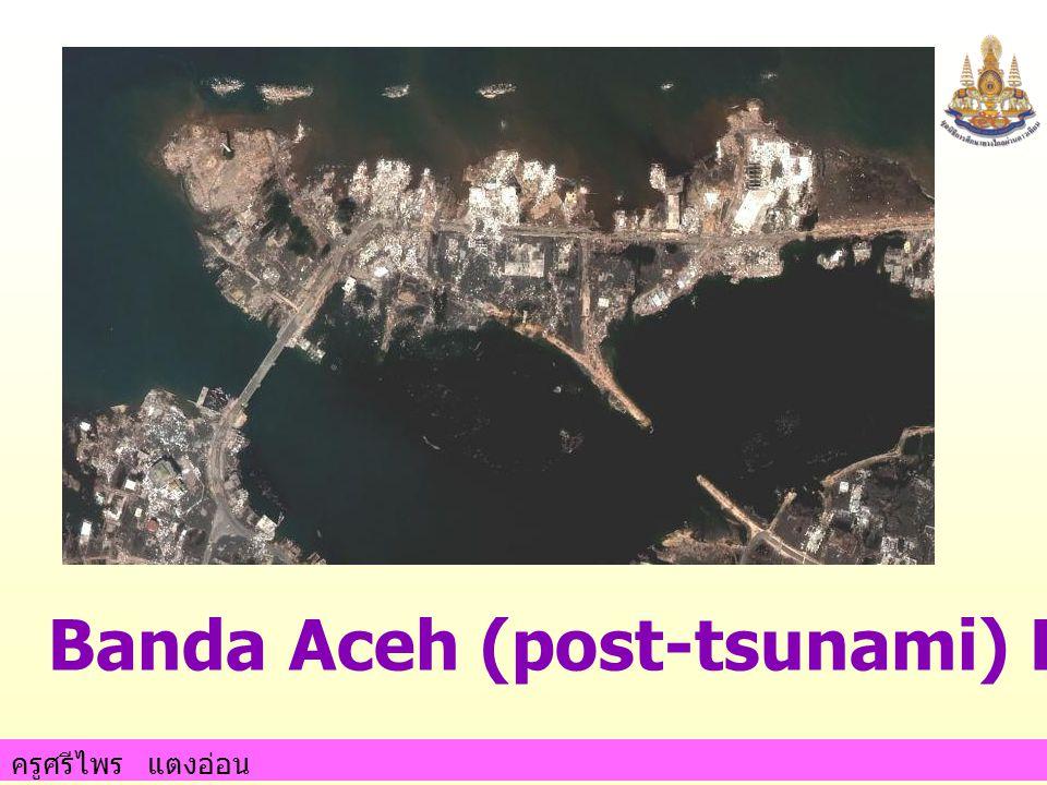 ครูศรีไพร แตงอ่อน Banda Aceh (post-tsunami) December 28, 2004
