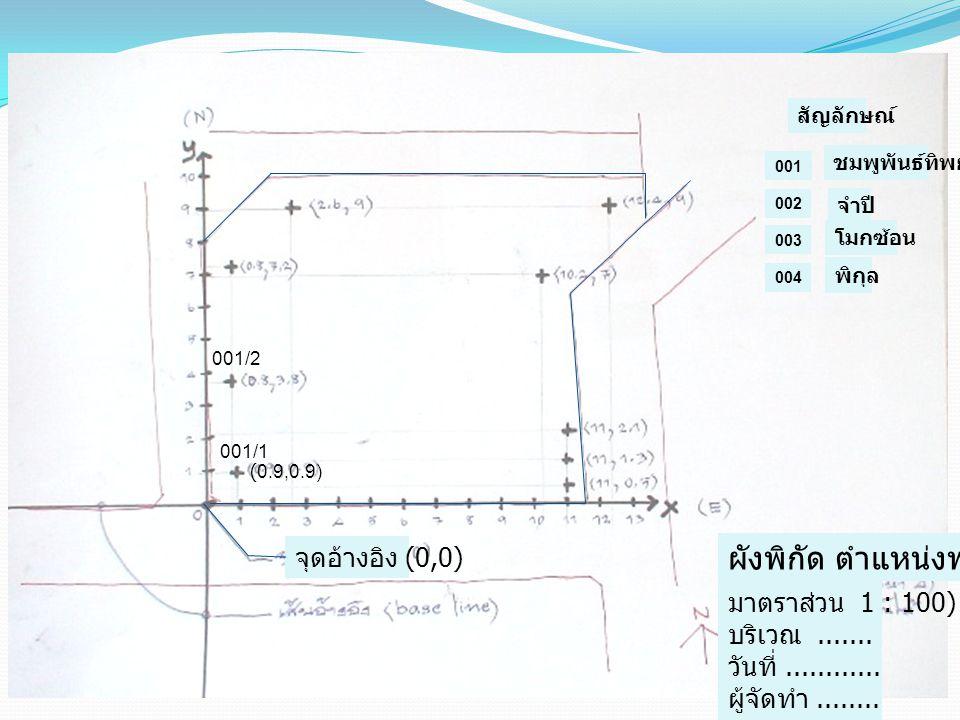 001/1 (0.9,0.9) ผังพิกัด ตำแหน่งพรรณไม้ 001/2 จุดอ้างอิง (0,0) มาตราส่วน 1 : 100) บริเวณ....... วันที่............ ผู้จัดทำ........ 001 002 003 ชมพูพั