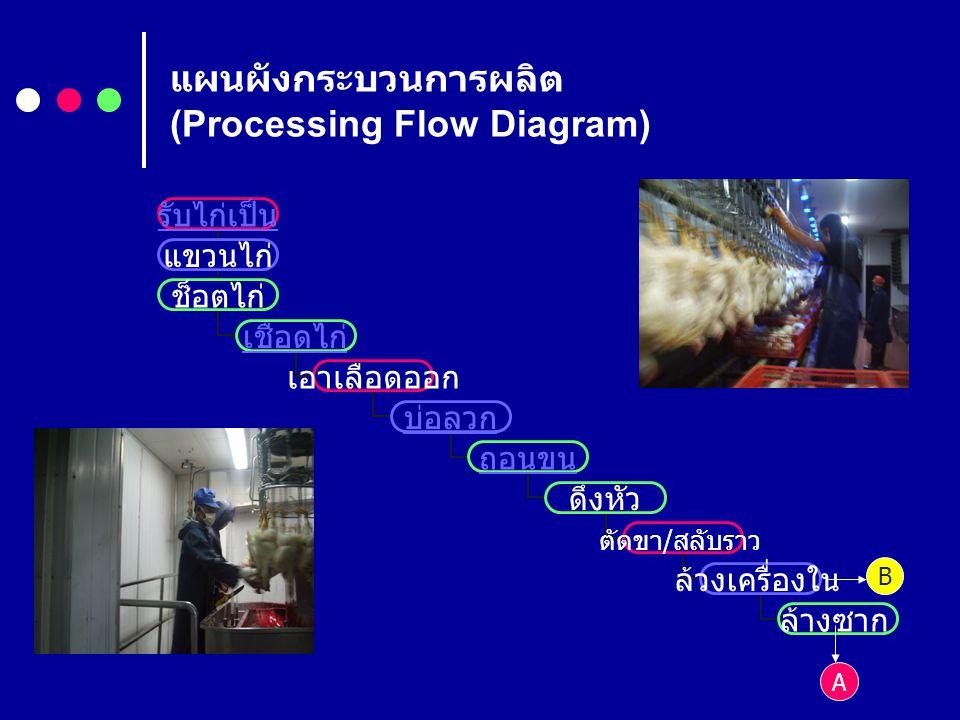 แผนผังกระบวนการผลิต (Processing Flow Diagram) รับไก่เป็น แขวนไก่ ช็อตไก่ เชือดไก่ เอา เลือดออก บ่อลวก ถอนขน ดึงหัว ตัดขา / สลับ ราว ล้วงเครื่องใน ล้าง