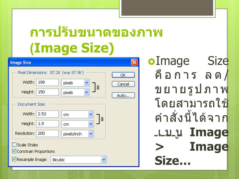 การปรับขนาดของภาพ (Image Size)  Image Size คือการ ลด / ขยายรูปภาพ โดยสามารถใช้ คำสั่งนี้ได้จาก เมนู Image > Image Size…